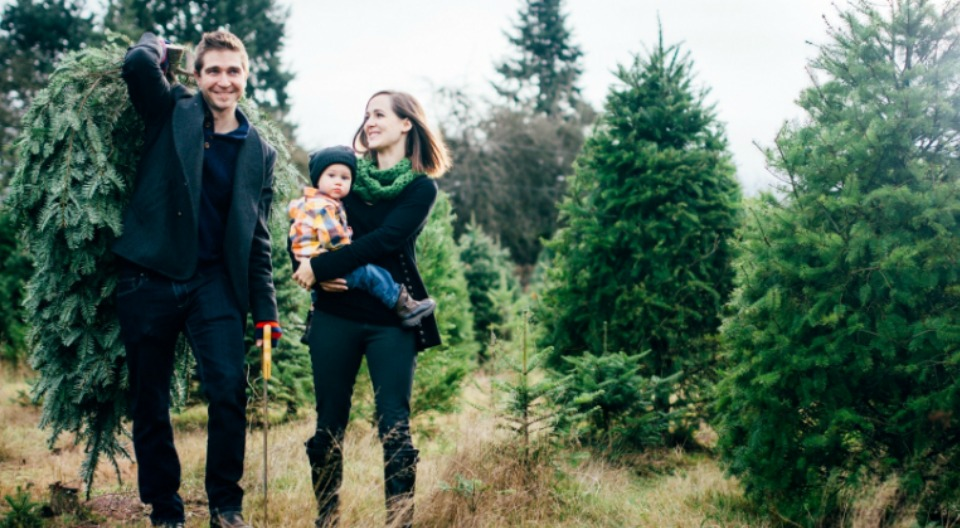 make lasting christmas memories - Christmas Tree Farm Near Me